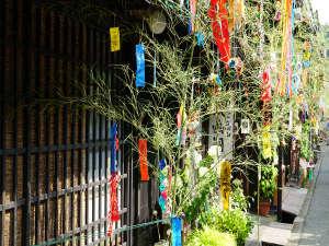飛騨高山の人気観光スポット・古い町並(上三之町)が七夕飾りで彩られます。