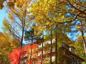 紅葉の森に佇む白船グランドホテル