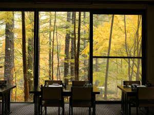 紅葉の森に囲まれたレストラン