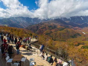 白馬岩岳マウンテンハーバー ◆ゴンドラ往復券付◆プラン