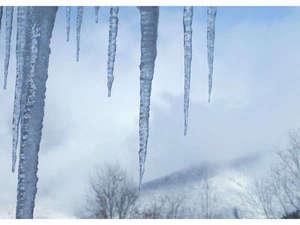 ◇冬の風物詩◇つららは、長いものだと1メートルに達することもあります