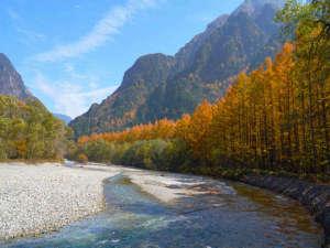 上高地あずさ川の黄葉