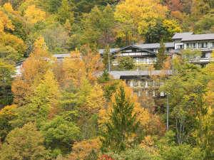 紅葉の森の中に佇む「えびすや」全景