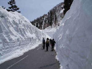 「乗鞍岳春山バス」6/30まで雪の感触を体感できますよー♪