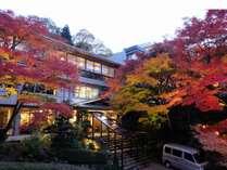 玄関まわりの紅葉