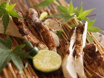 【緑亭】秋の味覚の代表 松茸を炭火焼で♪