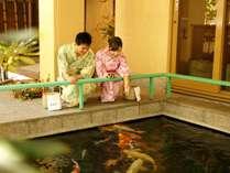 ★館内には鯉の泳ぐ池もあります。和風旅館ならではの風景。