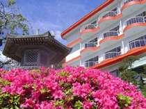 4月5月は当館周りのさつきが美しい季節