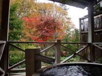 貸切露天風呂からの紅葉